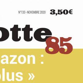 Dans le Sans-Culotte 85 n°133